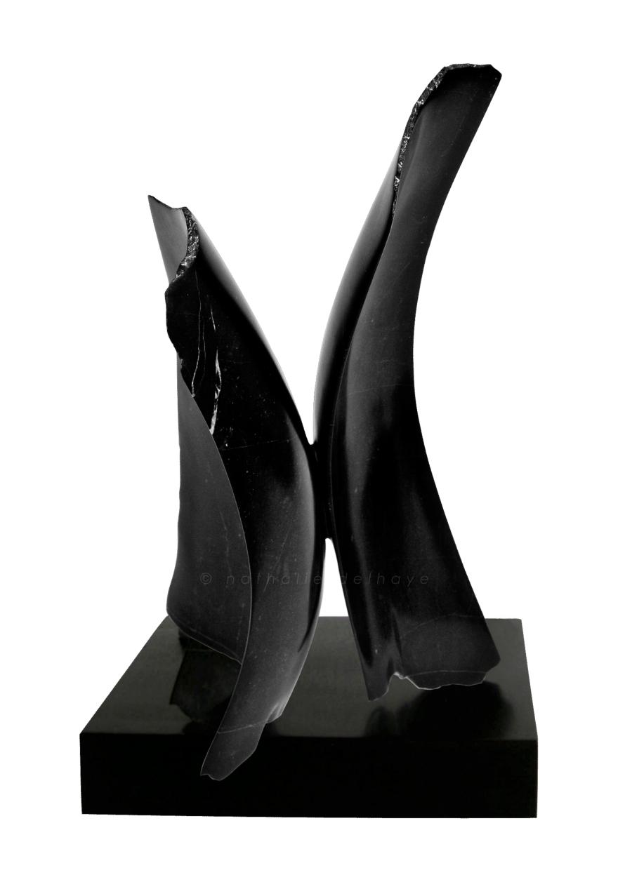 but what about emptiness ou un hommage à John Cage marbre noir de St triphon  42x20x20 cm  2009